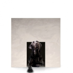 LE_CUBE_-_niche_chiens_chats_42123