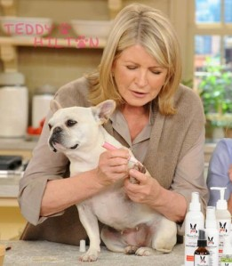 martha-stewart-paint-dog-na__oPt_1_1024x1024
