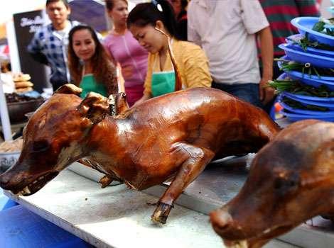 La consommation de la viande de chien est dangereuse pour la sant - Portion de viande par personne ...
