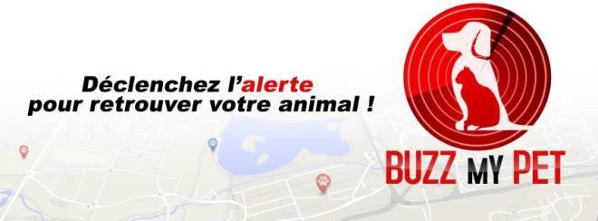 buzz_my_pet_chien_chat_perdu_fidanimo-2