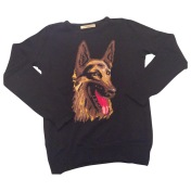 Pull chien Balenciaga 500€