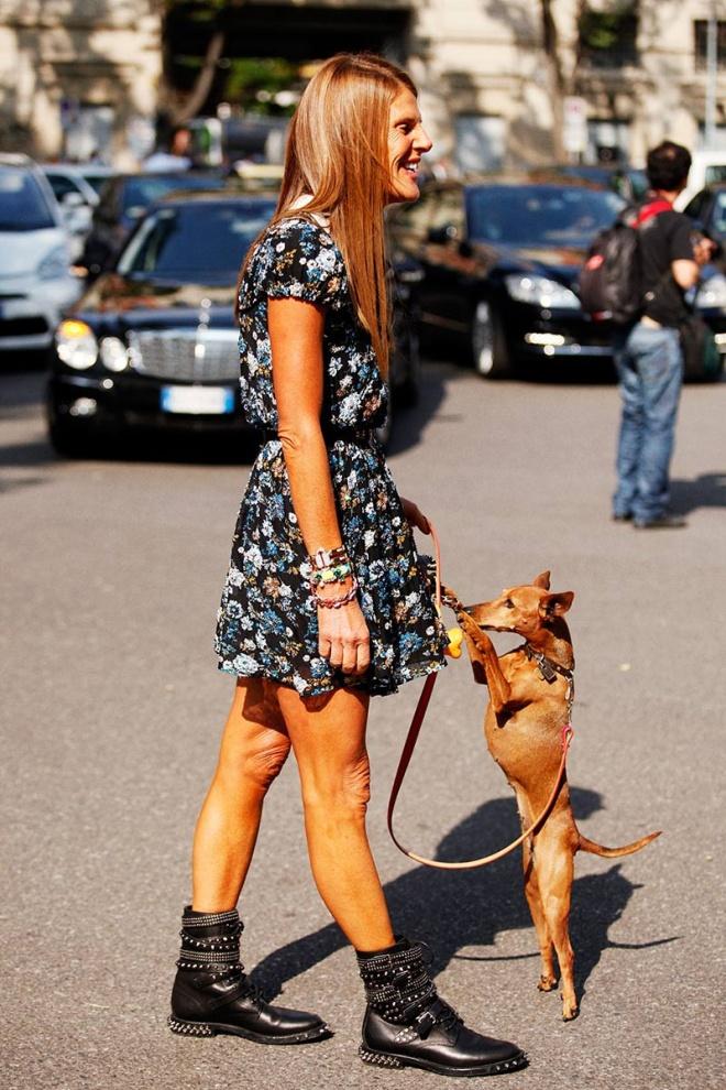 summer dog street style